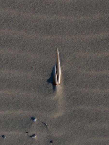 strandrelif7.jpg