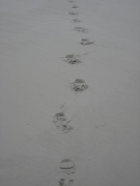 voetstappen.jpg